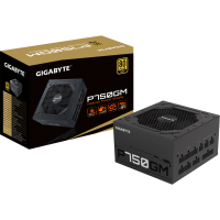 Gigabyte P750GM 750 Watt ATX (GP-P750GM)